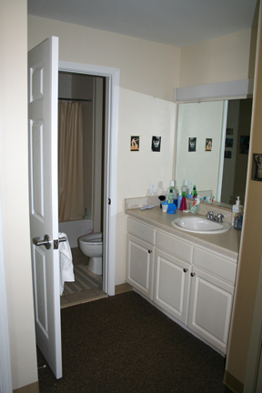 South Apartment Bathroom